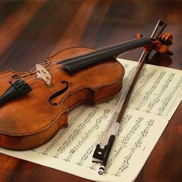 آموزش ویولن، آموزشگاه موسیقی هنر ایران زمین